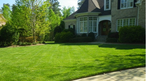 ARPS Professional Lawn Services | ARPS Lawn Services | Raleigh ...